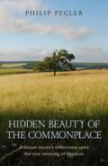 Hidden-beauty-book-cover